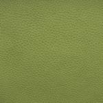 aurora-11-green