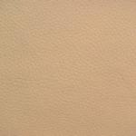 aurora-13-beige