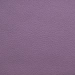 aurora-15-purple